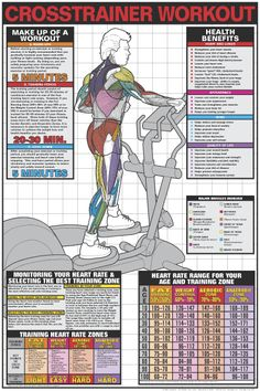 Crosstrainer Workout Poster - Laminated in Fitness Charts