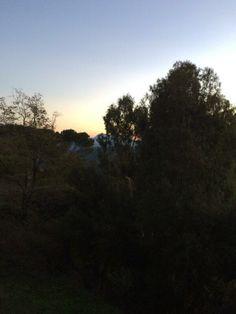 """@Giovanni Sedda """"#correre in #sardegna: adoro veder sfilare gli eucalipto e salutarli con i miei #scattidicorsa.Oggi corsa leggera :) """""""
