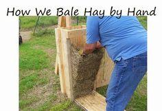 Oak Hill Homestead: Hay Baling