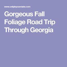 Gorgeous Fall Foliage Road Trip Through Georgia
