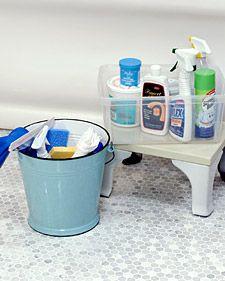 DIY Toilet Cleaner
