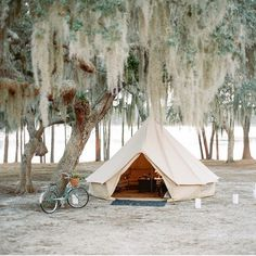 shelter-co:Our tent and that tree are perfection!  Regram from @mrsvalwaters who's Florida camp wedding last year was one of our favorites. Planning and design by @alison_events and flowers by @nataliebdesigns.gypsealife Camping Car, Camping Hacks, Camping Trailers, Camping List, Beach Camping, Luxury Camping, Teepees, Teepee Tent, Modern Hepburn