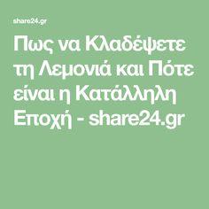 Πως να Κλαδέψετε τη Λεμονιά και Πότε είναι η Κατάλληλη Εποχή - share24.gr Note, Math Equations