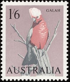 Australia bird stamps - mainly images - gallery format