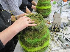 Easter Wreaths, Workshop, Avocado Toast, Wedding Events, Floral Design, Herbs, Pictures, Crafts, Food