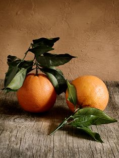 Oranges by Alessandro Guerani Photo Fruit, Fruit Picture, Fruit Photography, Still Life Photography, Still Life Pictures, Still Life Fruit, Still Life Drawing, Fruit Painting, Fruit Art