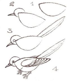 How to draw a bird. by iva