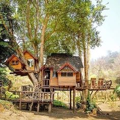 Creative Tree House Design - Page 34 of 41