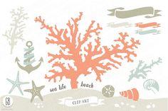 Beach sea corals nautical 01 by GrafikBoutique on @creativemarket