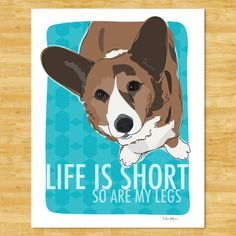 CUTE!   Cardigan Corgi Print Modern Dog Art - Life is Short So Are My Legs - Brindle Cardigan Corgi