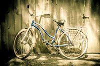 Cruiser bike at Detroit Zoo