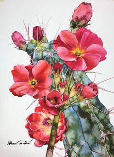 Watercolour Virtuoso: Kitipong Ti, фото № 16 Cactus Painting, Cactus Art, Painting & Drawing, Watercolor Plants, Watercolor Cards, Watercolor Paintings, Art Floral, Art Aquarelle, Southwestern Art