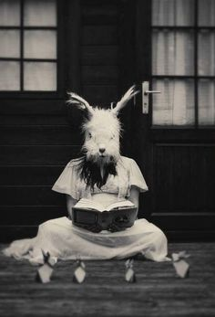 Creepy Reading Rabbit (My sister had a childhood computer game called Reading Rabbit that was awesome. Anyone remember that? (Nope, TinEye didn't help me out with this one. Creepy Art, Scary, Rabbit Life, Chesire Cat, Animal Masks, Dark Photography, Funny Bunnies, Weird World, Photos