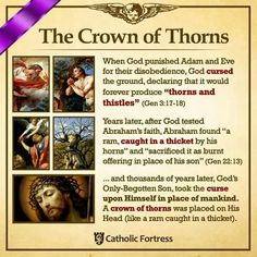 Crown of thorns- powerful reminders in history of OT! Catholic Theology, Catholic Religion, Catholic Quotes, Catholic Prayers, Religious Quotes, Catholic Traditions, Catholic Lent, Catholic Saints, Sainte Therese