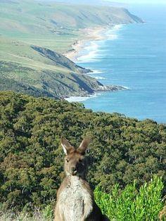 Victor Harbour, South Australia.