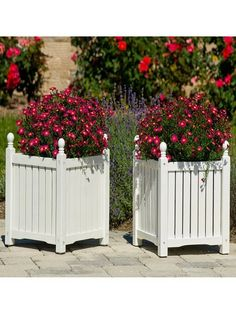 Beautiful wooden planter boxes : Hometone