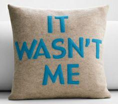 It Wasn't Me Pillow