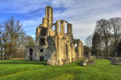 Resisting park, forest, france, ruines, abbey, parc, ruin, forêt, oise, abbaye, hubert, descamps, chaalis, ermenonville