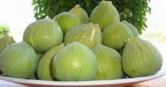 Figs from Lesvos island, Greece Natural Health Remedies, Herbal Remedies, Oil For Cough, Heritage Recipe, Avocado Health Benefits, Dandruff Remedy, Herbal Medicine, Health Tips, Herbalism