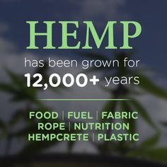 Hemp is an incredible plant, capable of helping the earth if we utilize it. Let American farmers grow hemp again! It used to be illegal NOT to grow it in some U.S. states. #hemp