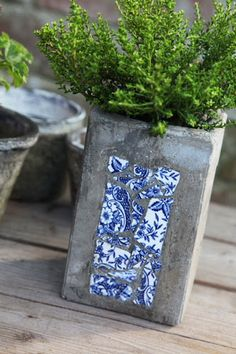 Beautiful concrete planter with inlaid blue and white pottery shards. Love it.
