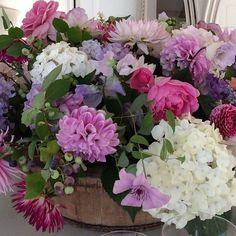 #regram from @cfgraham  #prettiest flowersever  #springtimeinacontainer