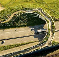 Art over the motorway