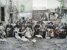 lace+&+ducks.jpg (800×600)