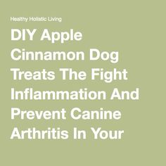 DIY Apple Cinnamon Dog Treats The Fight Inflammation And Prevent Canine Arthritis In Your Pet! - Healthy Holistic Living