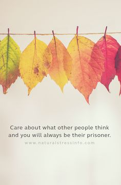 Care about what other people think and you will always be their prisoner.  #stress #stressed #anxiety #meditate #meditation #sleep #sleepproblem #relax #relaxation #calm #strongerimmunesystem #strongbody #healthy #peacefulsleep #relaxmind #inspirationalquotes #NaturalStressInfo #TheStressCompany