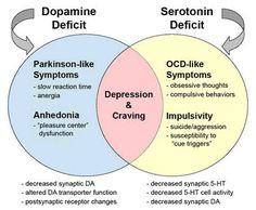 Dopamine vs Serotonin deficiencies (naturally treated with L-Tyrosine or L-Tryptophan, respectively) Mental Health Nursing, Mental Health Awareness, Disability Awareness, Dental Health, Obsessive Thoughts, Compulsive Behavior, Info Board, Stress, Anatomy And Physiology