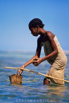 Frans Lanting - Vezo woman collecting seafood from lagoon, Western Madagascar