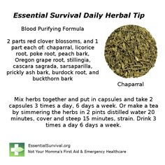 These herbs make up Dr. Christopher's Bloodstream Formula.