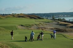 What's the 2015 U.S. Open at Chambers Bay like? Get the low down here: · The  LowWhat's TheGolf Courses
