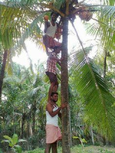 19 Epic Photos That Prove Indians Absolutely Believe In Teamwork