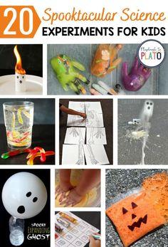 Fun Halloween Activities, Fall Activities For Toddlers, Halloween Science, Autumn Activities, Halloween Fun, Halloween Pumpkins, Science Experiments Kids, Science For Kids, Science Activities