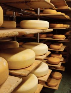 The Art and Science of Making Cheese | Edible Feast via Edible Ohio Valley #ediblepantry