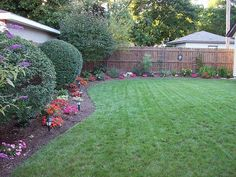 Backyard landscaping I want this for my new backyard Minus the big bushes