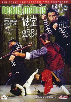 Deadly Mantis starring the ever cool David Chiang...to me one of the best movies he ever starred in. this movie was deep Kung Fu....totally mindblowing martial arts here. I love movies that feature any kung fu animal styles and this one put Mantis style on the map..you have no idea how many people go out and find a sifu to teach them Mantis after watching this movie...its staggering!
