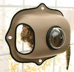 Bubble Pod Window Cat Bed