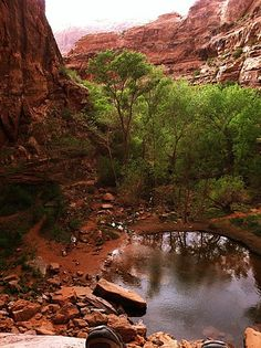 Moonflower Canyon