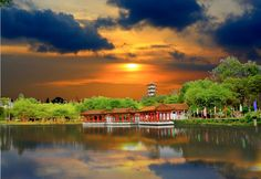 The Singapore Chinese Garden. Talk about tranquility.