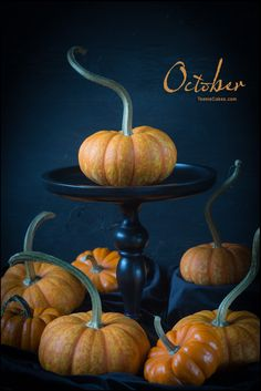 October - Its the Great Pumpkin, ... | TeenieCakes.com #foodphotography #pumpkins