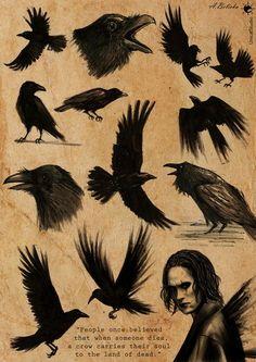 The Crow by UnicatStudio on DeviantArt Crow Art, Raven Art, Tattoo Crane, Tattoo Bird, Hummingbird Tattoo, Arm Tattoo, Crow Tattoo Design, Crow Movie, Traditional Artwork