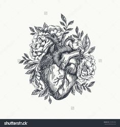 Valentines Day Card. Anatomical Heart With Flowers. Vector Illustration…