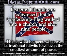 It seems liberals are convinced that a Confederate Flag walked into a church and shot nine people. Today's Toons 6/29/15 - Pookie's Toons - The Briefing Room