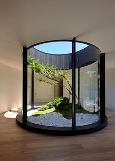 Design Detail - An Atrium Adds Nature And Light Inside This Home