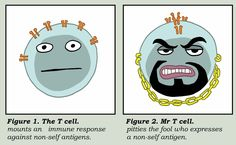 """""""I pity the fool who expresses a non-self antigen."""""""