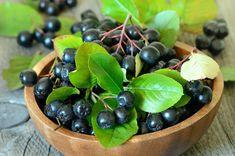 die vitaminreichen Aroniabeeren ! leckeres gesundes Ur-Obst winterhart