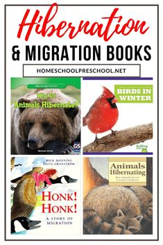 Winter is a great time to add books about hibernation and migration to your reading time. Here's a great list of picture books to get you started! Historical Fiction Books For Kids, Nonfiction Books For Kids, Audio Books For Kids, Art Books For Kids, Best Children Books, Kids Story Books, Childrens Books, Books About Kindness, Spring Books